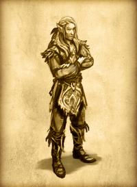 Herokon Online Elf